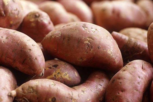 Are Baked Potatoes Good for Diabetics